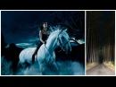 ШОК! На скорости 100 км/час ночью машину обгоняет девушка на белом коне