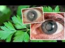 Planta Milagrosa Que Cura 9 Enfermedades De Los Ojos Incluyendo Cataratas!
