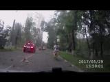 Ураган в Москве уронил дерево на машину. 29.05.2017.
