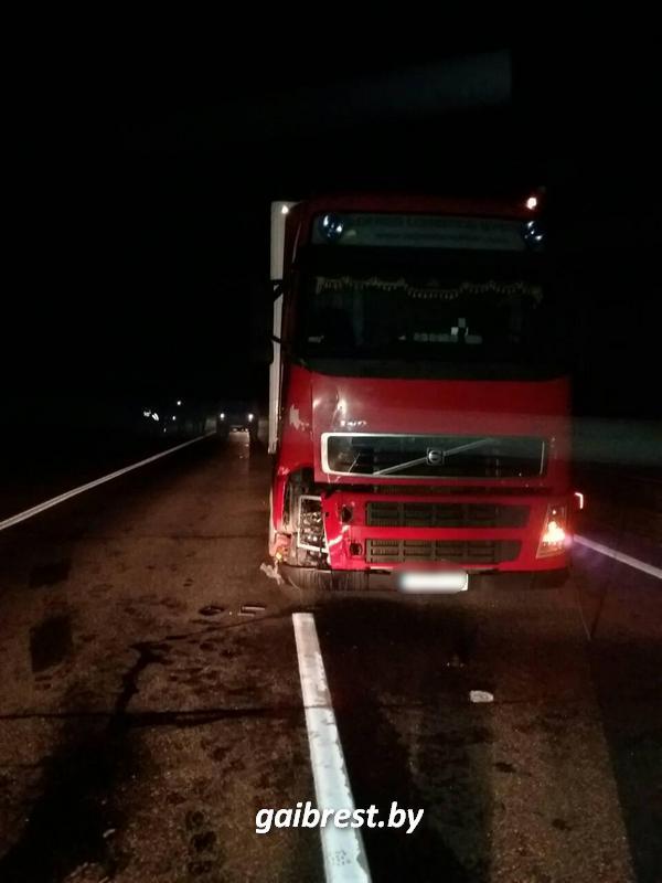 Фура насмерть сбила пешехода, который гулял ночью на трассе М1