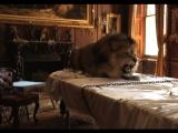 Karen Elson by Tim Walker for Love No.10 Film