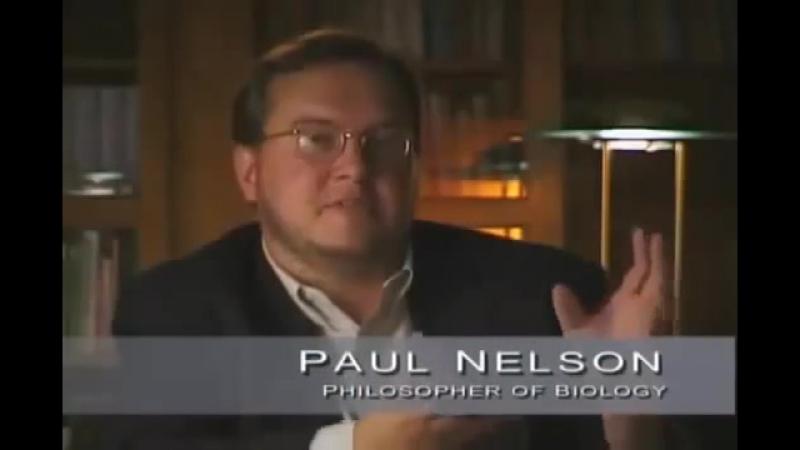 Ученые признали существование Творца, крах теории Дарвина