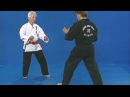 Hapkido Purple Belt W/ master Bong Soo Han - Đai tím