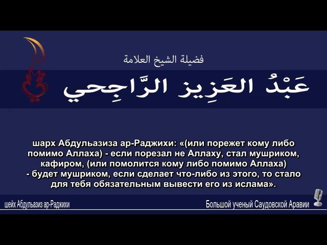 шейх Абдульазиз ар-Раджихи - мазхаб саляф, куфр в тагута невозможен без такфира м...