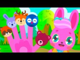 Finger Family Animals Cartoon Nursery Rhymes 20 min Compilation 1