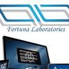 Fortuna-PC.ru