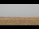Кершабак 1-шi орын Актобе облысы