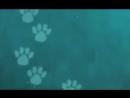 Коты-Воители Смерть Синей Звезды