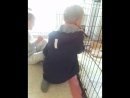 Video 7135e62f4c359464cb85b9631a7c32fe