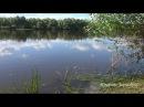 Река, Природа, звуки природы, лето, релакс, пение птиц, красивое видео, медитация. ...