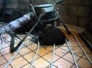 Заливка полусухой машинной стяжки