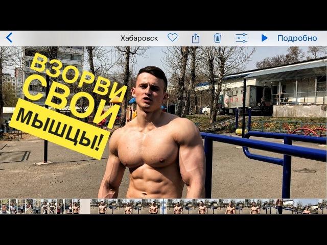 Базовая тренировка воркаутера Построй КРАСИВОЕ тело