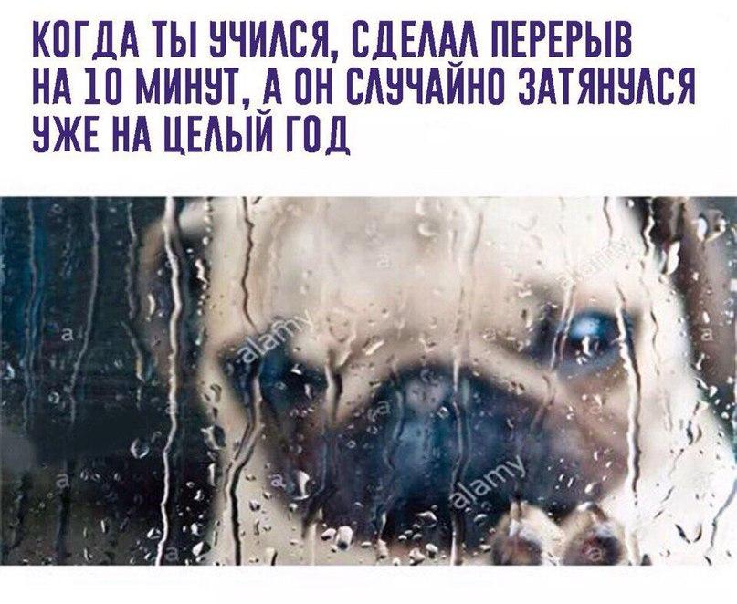 Артемий Данченко | Москва