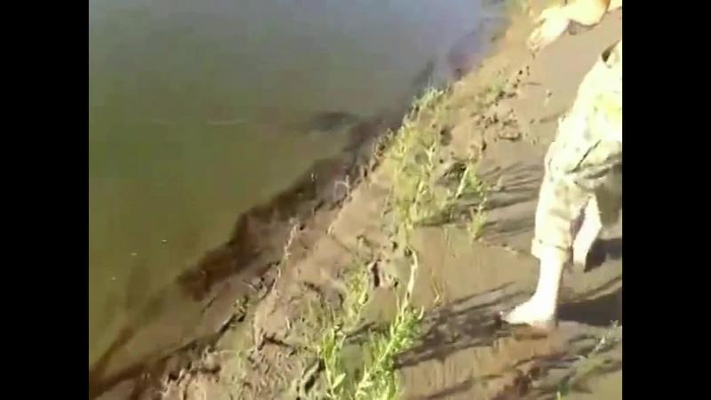 Без названияВот это РыбалкаТы не поверишьЭту страну не победить201795