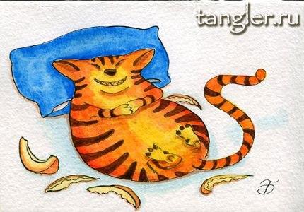 Котяра, объевшаяся сладкой дыни (Мой любимый котик)