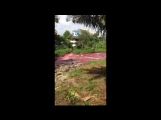 HEBOH!! Mendadak Air Sungai Bah Bolon Berubah Merah Darah, Warga  Pertanda Apa Ini