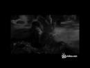 Сектор газа сказка для взрослых , Музыкальные клипы, 360
