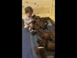 Маруся и щеночки