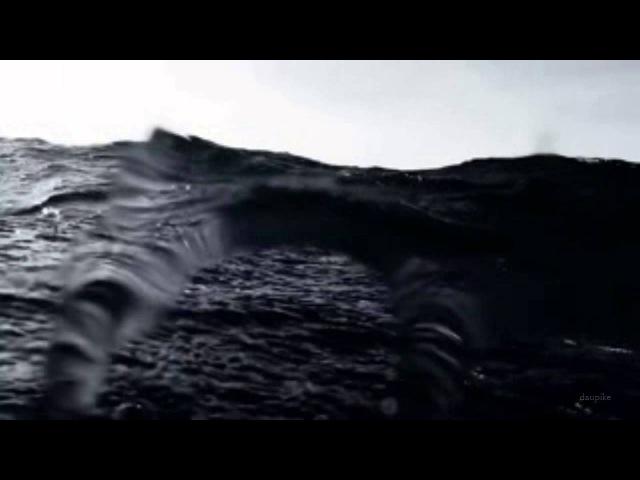 Day Before Us Voyna serdtsa Unofficial Music Video 2015 Prélude à l'âme d'élégie