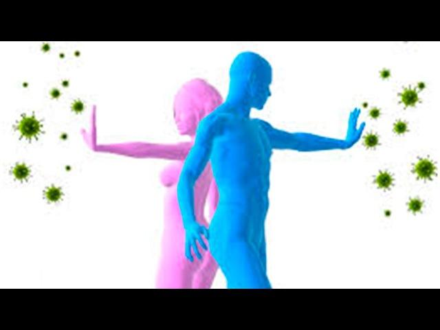 Как укрепить иммунитет Виоргон 3 и Виоргон 4 лучшие средства для укрепления имму...