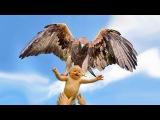 Eagle Attacks!   (Real or Fake) Bald Eagle, Golden Eagle Falcon