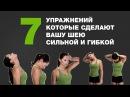 7 Упражнений Которые Сделают Вашу Шею Сильной и Гибкой