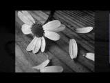 Rene Aubry - Non ti amo piu...