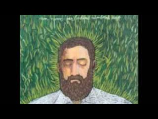 Iron and Wine - Love and Some Verses (with lyrics)
