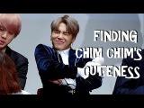 BTS FINDING CHIM CHIM'S CUTENESS[PARK JIMIN]