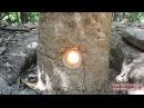 Primitive Technology Natural Draft Furnace
