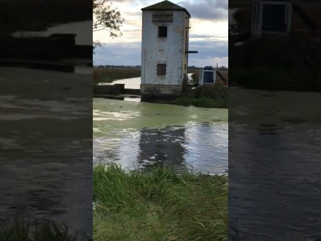 Откачка воды из реки Тростянка