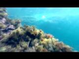Аэросъемка красивых мест Крыма - Тарханкут