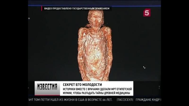 Наконсилиуме египтологов Эрмитажа ипетербургских медиков раскрыты тайны мумии, сменившей пол - Новости - Пятый канал