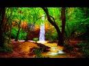 Música Relaxante Zen - Flauta, Sinos Tibetanos e Sons da Natureza - Meditar e Dormir