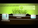 Eco Friendly Wastewater Treatment System