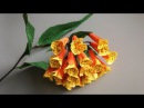 ABC TV How To Make Bomarea Fiesta Paper Flower From Crepe Paper Craft Tutorial