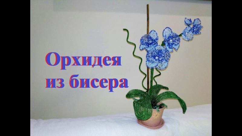 ОРХИДЕЯ из бисера. Нow to make orchid flower DIY