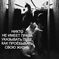 Антон Чернявский