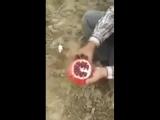 Как правильно чистить гранат