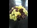 20.07.2017. Цветочный видео отчёт от Антошки