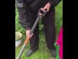 Мужчина решил снять ролик про садовые инструменты. Но в процесс съемки вмешалась 5-летняя внучка...