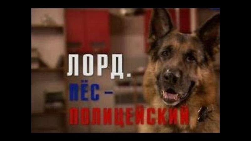 Лорд Пёс полицейский 12 Серия