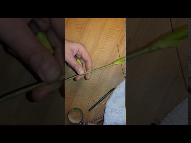Лепка почки розы, обкатка ствола с завершением,а также начало сравнения твердых и мягких вайнеров