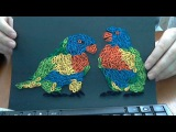 How to make two parrots quilling painting