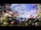 Л Бетховен 'Лунная соната'   Ludwig Van Beethoven   Moonlight Sonata