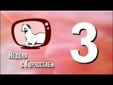 Неделя с Горностаем. Выпуск №3, 10.10.17