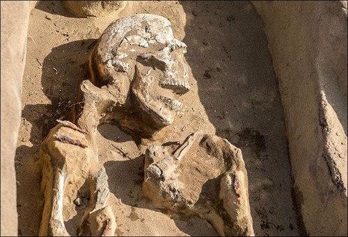 В России обнаружен древний странный скелет