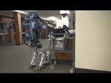 Прогресс не стоит на месте. Робот уже может заменить пьяного грузчика.
