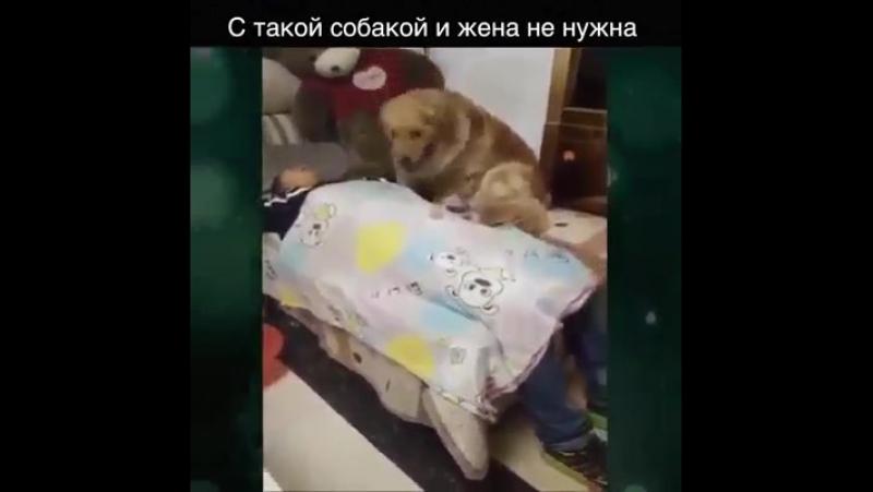 Клуб убеждённых холостяков представляет: