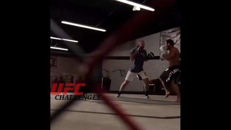 UFC_John Dodson